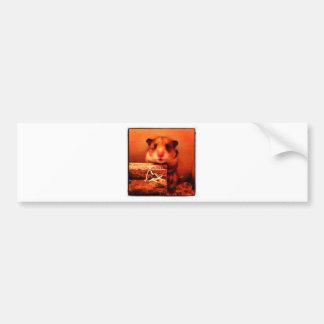 Hamster-Fotoentwurf Autoaufkleber