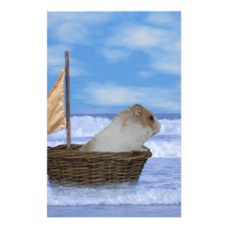 Hamster-Seemann Briefpapier