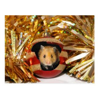 Hamster-Weihnachten Postkarte