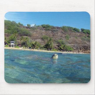 HANAUMA BUCHT HAWAII - Hawaii-Meeresschildkröte Mauspad