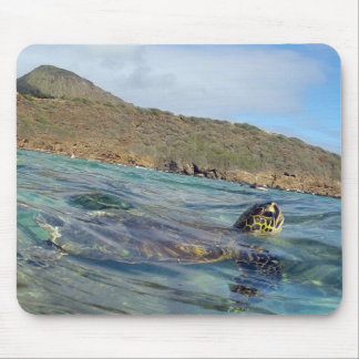 HANAUMA BUCHT HAWAII - Hawaii-Meeresschildkröte Mauspads
