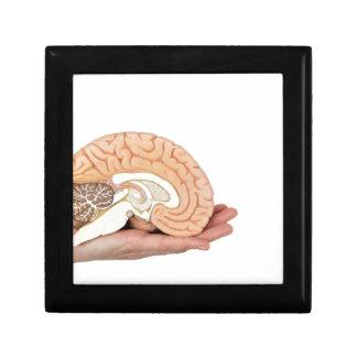Hand, die Gehirnhemisphäre auf weißem Hintergrund Geschenkbox