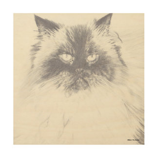 Hand gezeichnete Katzen-hölzerne Platten-Kunst Holzleinwand