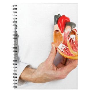 Hand hält menschliches Herzmodell am Körper Notizblock