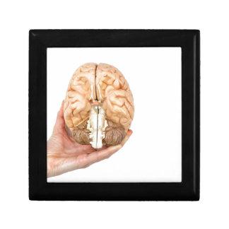 Hand hält vorbildliches menschliches Gehirn auf Erinnerungskiste