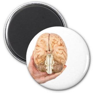 Hand hält vorbildliches menschliches Gehirn auf Runder Magnet 5,7 Cm
