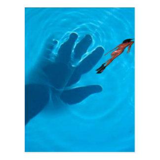Hand in pool.jpg postkarte