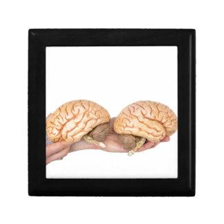 Hände, die vorbildliches menschliches Gehirn auf Erinnerungskiste