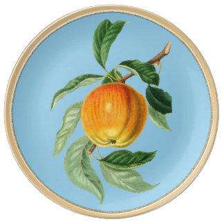 Handgemalte dekorative Porzellan-Platte Apples Teller