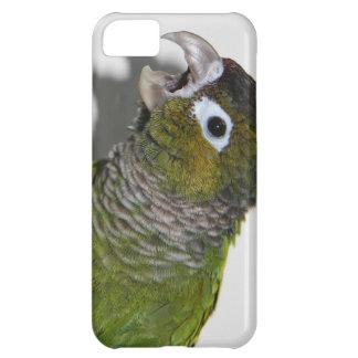 Handy-Fall (iPhone u. alle Hersteller) iPhone 5C Hülle