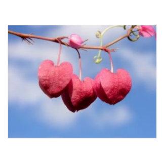 Hanging_hearts Blumenpostkarte Postkarte