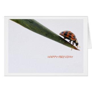 Happy Birthday Card Ladybird Karte