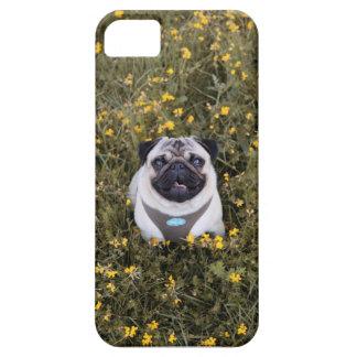 Happy Pug Iphone Case