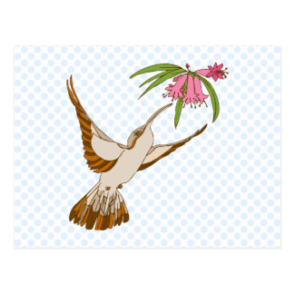 Harlan Kolibri Postkarte
