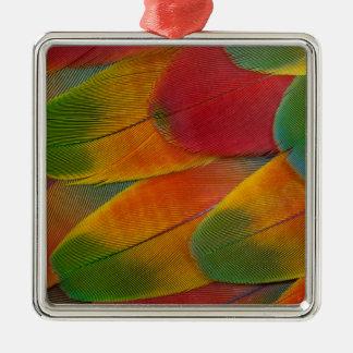 Harlekinmacaw-Papageienfedern Silbernes Ornament