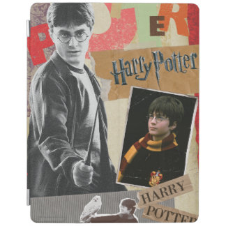 Harry Potter dann und jetzt iPad Hülle