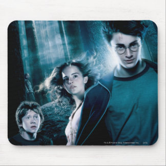 Harry Potter Ron Hermione im Wald Mousepad