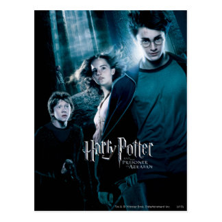 Harry Potter Ron Hermione im Wald Postkarten
