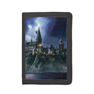 Harry Potter-Schloss | Moonlit Hogwarts