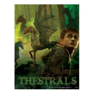 Harry Potter Thestrals Postkarte