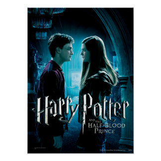 Harry und Ginny 1 Poster