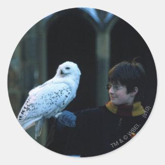Harry und Hedwig 2 Runder Aufkleber