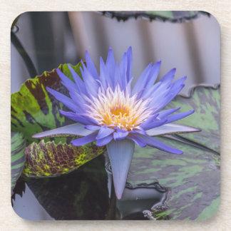 Harte PlastikUntersetzer der lila Wasserlilie Untersetzer