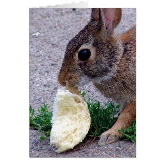 Häschen gefundenes Brot Karte