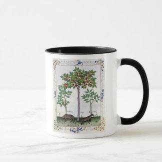 Haselnuss Bush und Kirschbaum Tasse