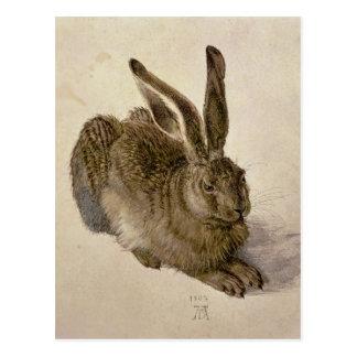 Hasen, 1502 postkarte