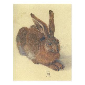 Hasen durch Albrecht Durer Postkarte
