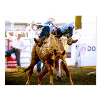 Hauptjoseph-Tage Rodeo, Joseph, Oregon, USA 2 Postkarte