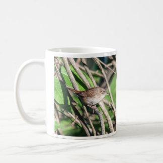 Haus-Zaunkönig Kaffeetasse