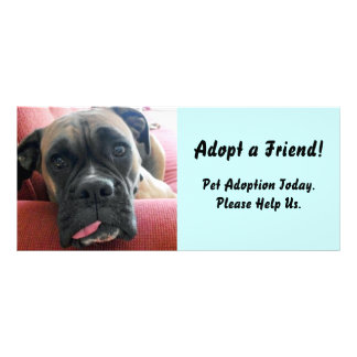 Haustier-Adoptions-Gestell-Karte Werbekarte