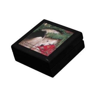 Haustier-Denkmal-Kasten Geschenkbox