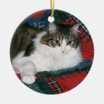 Haustier-Erinnerungsweihnachtsverzierung