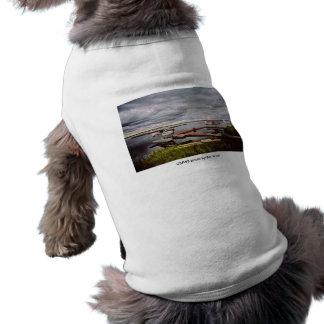 Haustier Floatplanes Kleidung/drei angekoppelt Shirt