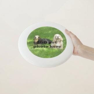 Haustier-Foto Frisbee