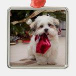 Haustier-Foto-Weihnachtsverzierung