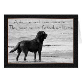 Haustier-HundeBeileids-Karte - Touch unsere Herzen Karte