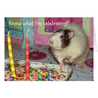 Haustier-Ratte Ollie Geburtstags-Karte Karte