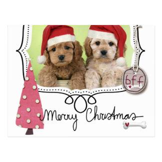 Haustier-WeihnachtsFoto-Karte Postkarten