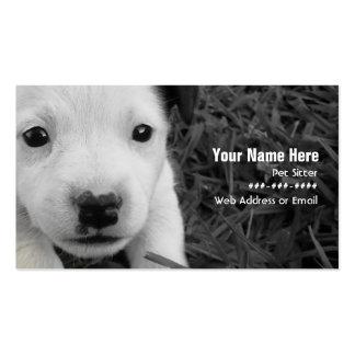 Haustiersitter-Geschäfts-Karte - Visitenkarten