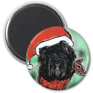 Havana-Seide-Hund Runder Magnet 5,1 Cm