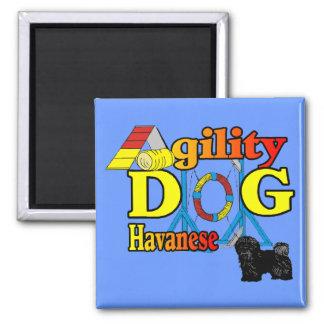 Havanese_Agility Geschenke Quadratischer Magnet