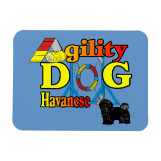 Havanese Agility Magnet