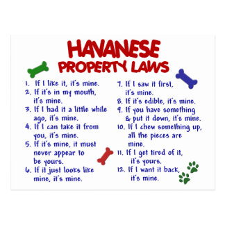 HAVANESE Eigentums-Gesetze 2 Postkarte