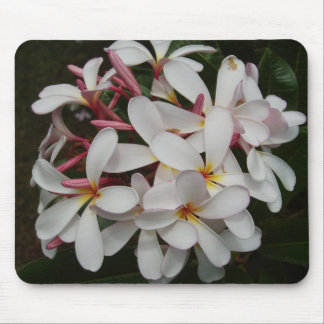 Hawaii-Blume Mauspads