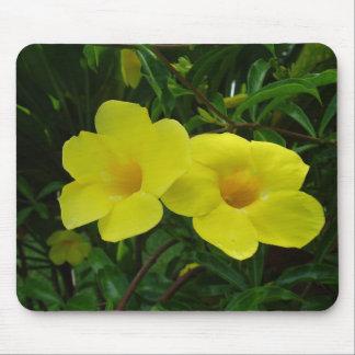 Hawaii-Blume Mousepads