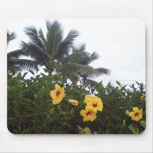 Hawaii-Blumen Mousepads